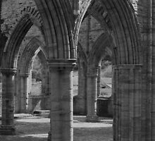 Tintern Abbey by Rachel Down