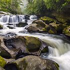 Chattooga River Potholes Waterfall Highlands NC - The Artist&#x27;s Hand by Dave Allen