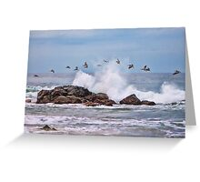 Pelican Break Greeting Card