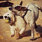 I said it's MY ball! by HelenThorley