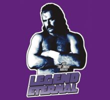 LEGEND ETERNAL - Jake The Snake Roberts by fanboydesigns