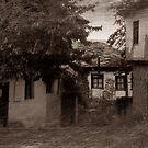 Ruralscape in sepia by Stefan Kutsarov