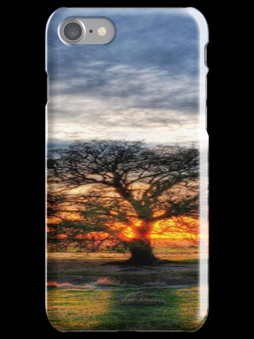 Tree by TaylorAXO
