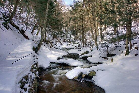 Climbing Ganoga Glen Trail To Erie Falls by Gene Walls