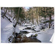Climbing Ganoga Glen Trail To Erie Falls Poster