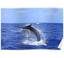 Marlin Canvas or Print - Giant Black Marlin Head Shake Poster