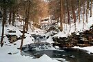 A New Winter Arrives At Waters Meet  by Gene Walls