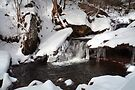 Snow Covered Unsung Glen Leigh Waterfall by Gene Walls