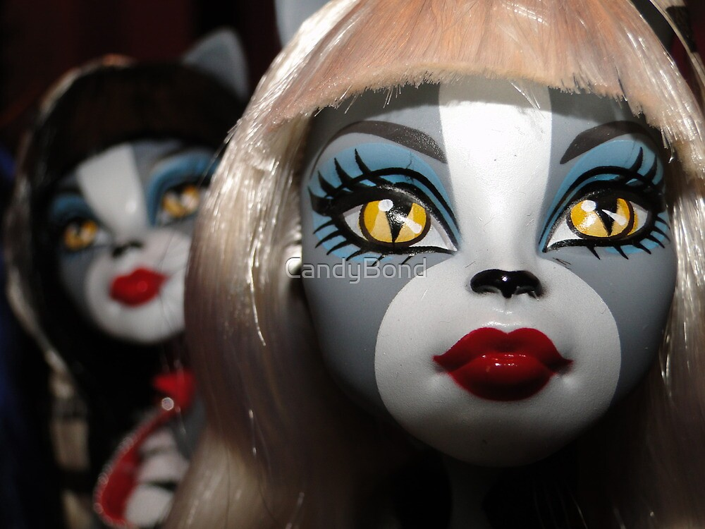 Monster High Doll Close Up by CandyBond