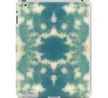 #63 iPad Case/Skin