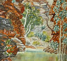 Serpentine Gorge, NT by Virginia  Coghill