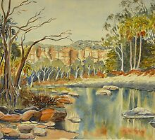 Carnarvon Gorge 2 by Virginia  Coghill