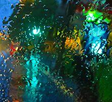 January Rain on the Windshield by David Denny