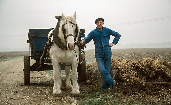 Le Titre farmer with horse and cart 198402150009 by Fred Mitchell