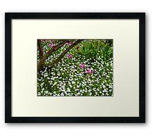 multiple flowers Framed Print