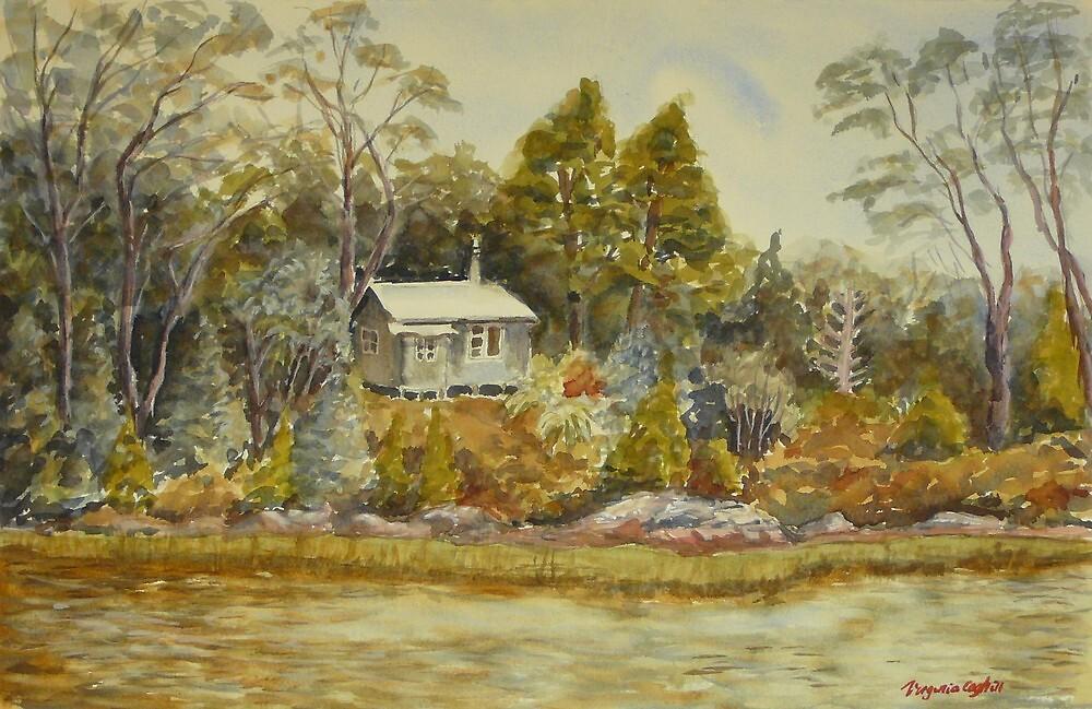 Lake Dobson, Tasmania by Virginia  Coghill