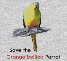 Orange-bellied Parrot (large logo) light colours by OBparrot