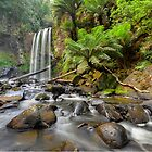 Hopetoun Falls by Warren  Patten