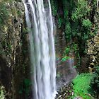 Queen Mary Falls by onemistymoo