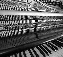 In Tune by John Dunbar