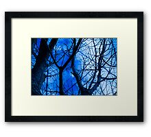 Different kind of web Framed Print
