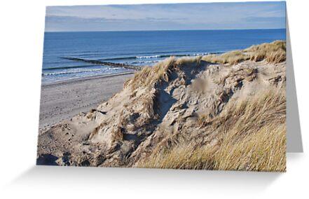 Dune & Beach by Adri  Padmos