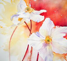 White Windflowers by Ruth S Harris