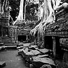 Cambodia Noir - Taken Over by Tyson Battersby