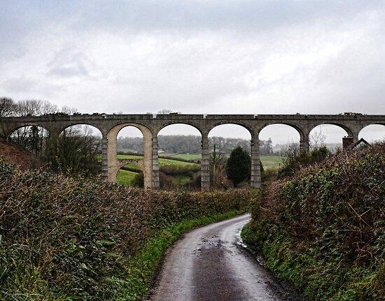 Muddy Lane At Uplyme, Devon. UK by lynn carter