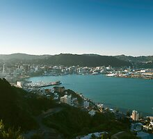 Wellington from Mount Victoria by EylandImages