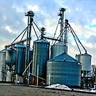 Grain Bins by Kathie Smith