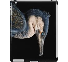 A Glimpse of the Past iPad Case/Skin