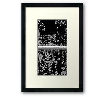 Snowflake Stone Window Framed Print