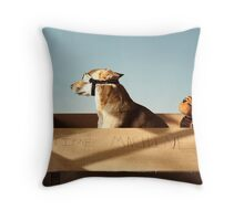 Jack and Hobbes Throw Pillow