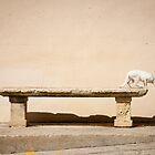 Gozo by EylandImages