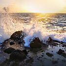 Splash by donnarebecca