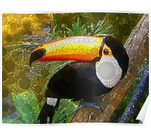 Can A Toucan Do the Can Can? Poster