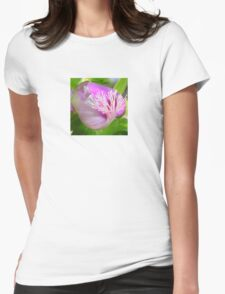 Pink Polygala Myrtifolia in Macro with Green Background  Womens Fitted T-Shirt