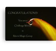 banner for Macro Magic Canvas Print