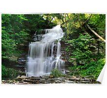Ganoga Falls In Rickett's Glen Poster