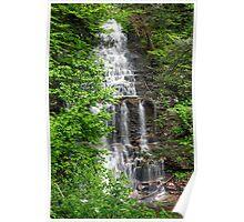 Great Ganoga Falls Through The Trees Poster