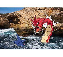 Pokemon in real life Photographic Print