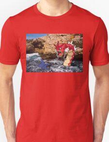 Real world vs Pokemon T-Shirt