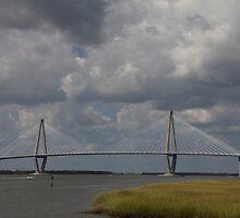 Arthur Ravenel Jr. Bridge  by jeffreynelsd