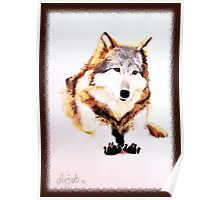 Sitting Wolf Poster