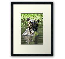 """I Don't Care"" Bear  Card Framed Print"