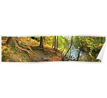 Linear Park by Irondequoit Creek Poster