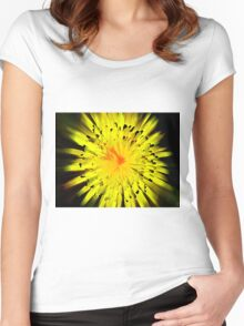 DANDELION SPLASH Women's Fitted Scoop T-Shirt
