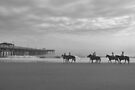 Horses At The Pier by ©Dawne M. Dunton