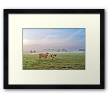 A Misty September Moooning Framed Print